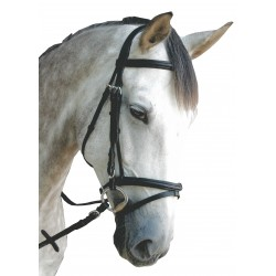 Leather Bridle P.E Royan combined