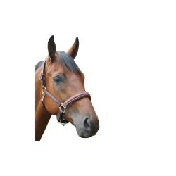 Privilège Equitation - Royan leather Halter