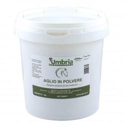 Garlic powder - 1 Kg