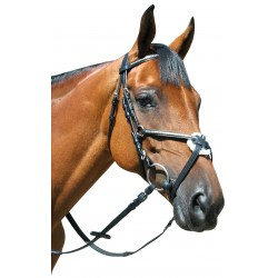 Leather bridle P.E Deauville crossed