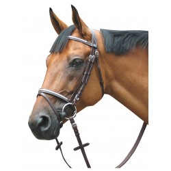 Bridle leather P.E Deauville combined