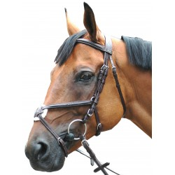 Leather bridle P.E Royan crossed
